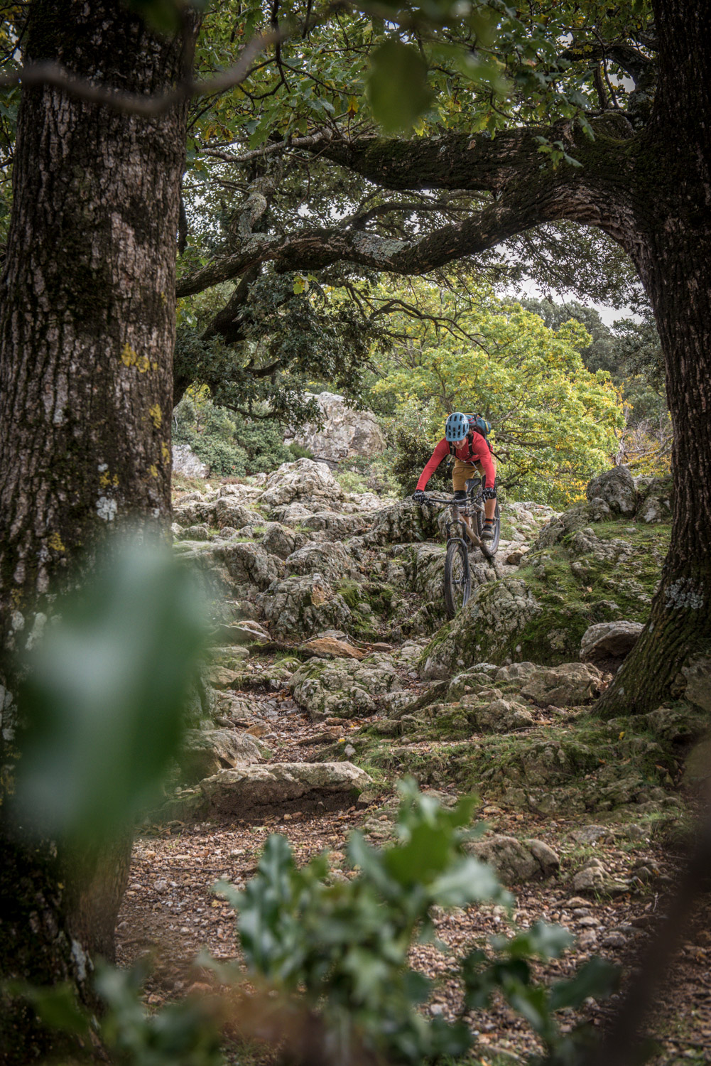Choose your line wisely | Bikefex