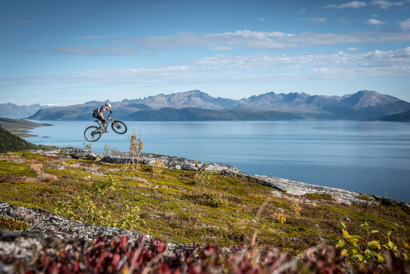 Jumping into spring like ... | Bikefex